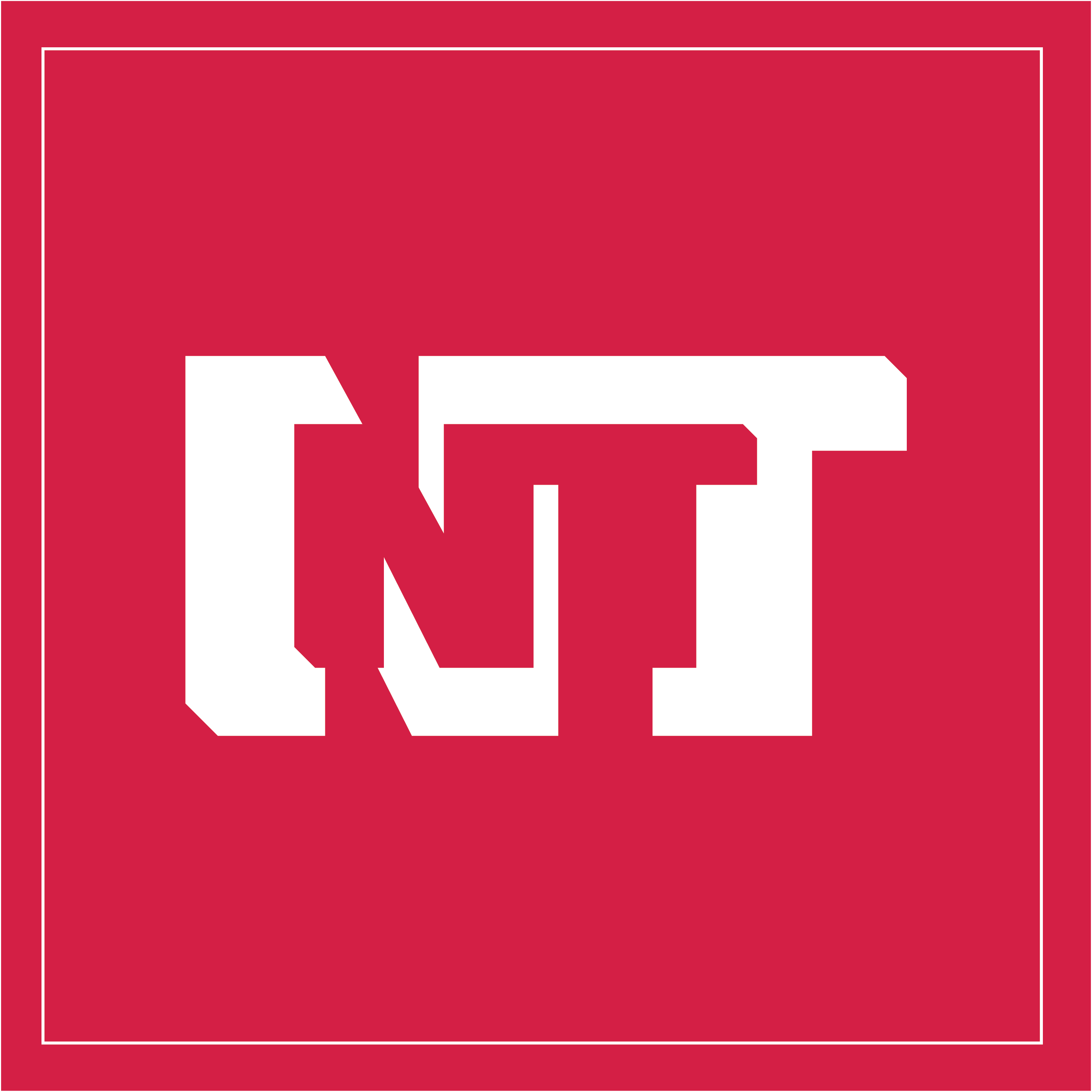nt-red-square-outline